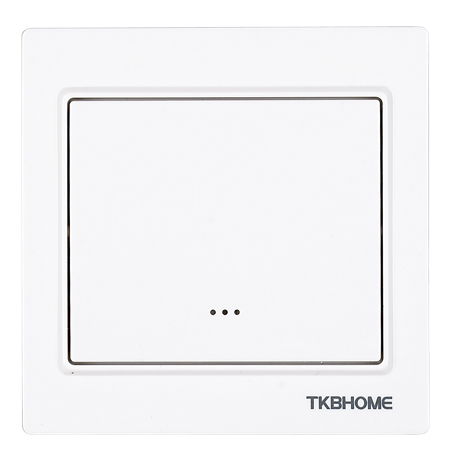TKB Home Dimmerinsert with Single Paddle