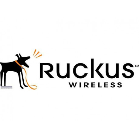 Ruckus Wireless License End User WatchDog Support Per SZ/(v) SZ AP, 5 YR